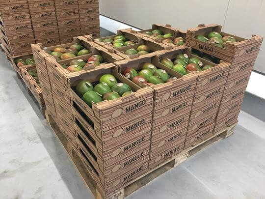 Crossdocking van exotisch fruit